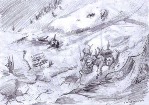 Reindeer panorama